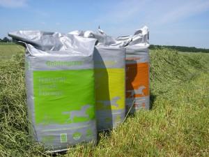 Golden GrassRyegrass Timothy Mix 20